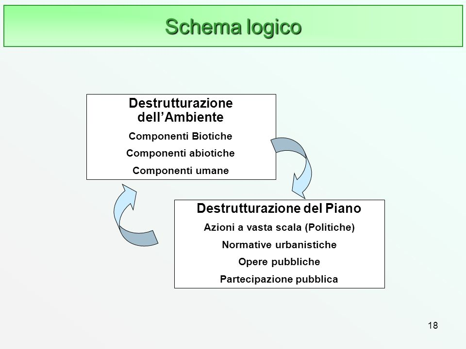 18 Schema logico Destrutturazione dellAmbiente Componenti Biotiche Componenti abiotiche Componenti umane Destrutturazione del Piano Azioni a vasta sca
