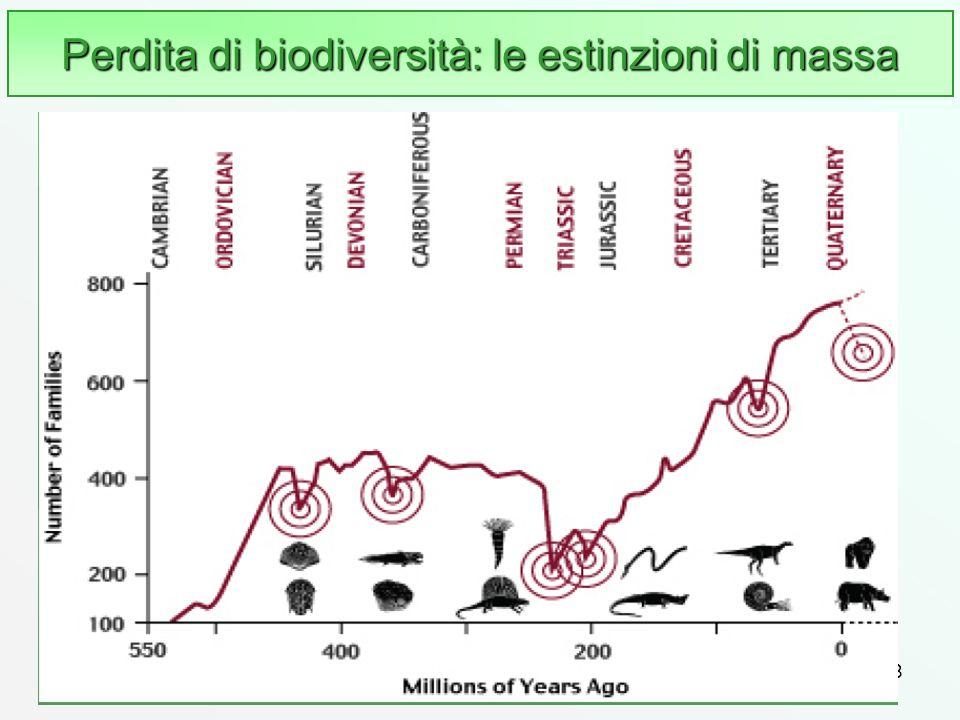 78 Perdita di biodiversità: le estinzioni di massa