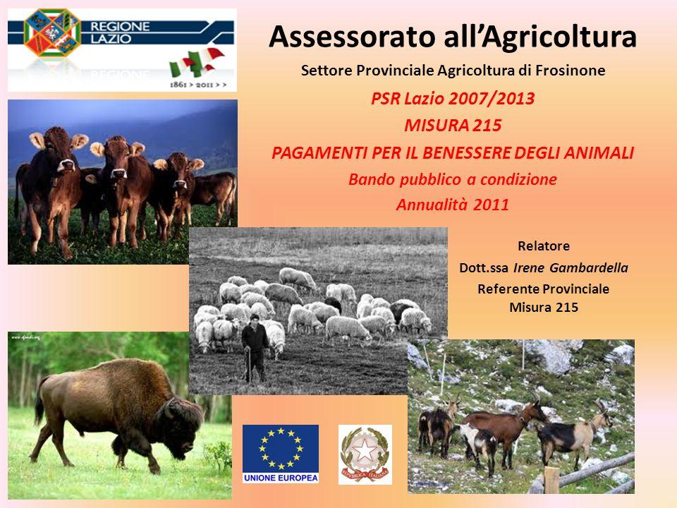 Assessorato allAgricoltura PSR Lazio 2007/2013 MISURA 215 PAGAMENTI PER IL BENESSERE DEGLI ANIMALI Bando pubblico a condizione Annualità 2011 Settore