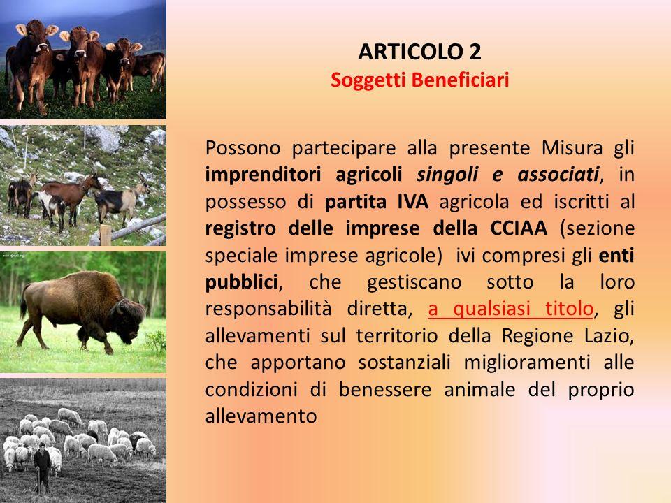 Possono partecipare alla presente Misura gli imprenditori agricoli singoli e associati, in possesso di partita IVA agricola ed iscritti al registro de
