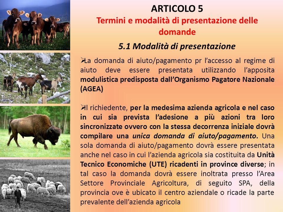 ARTICOLO 5 Termini e modalità di presentazione delle domande 5.1 Modalità di presentazione La domanda di aiuto/pagamento pr laccesso al regime di aiut