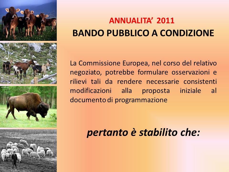 ANNUALITA 2011 BANDO PUBBLICO A CONDIZIONE La Commissione Europea, nel corso del relativo negoziato, potrebbe formulare osservazioni e rilievi tali da