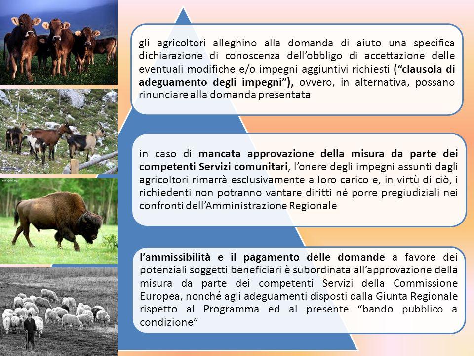 Criteri di priorità Aziende con allevamenti ubicati in aree o territori interessati da specifiche misure di biosicurezza, o lotta contro le principali malattie del bestiame, imposte dall Autorità Sanitaria competente a seguito di focolai o emergenze epizootiche ricorrenti Allevamenti soggetti ai vincoli imposti dalla Direttiva 96/61/CE relativa alla prevenzione e riduzioni integrate dell inquinamento (IPPC); Aziende con il più elevato punteggio ponderato, derivante dalla valutazione ex-ante