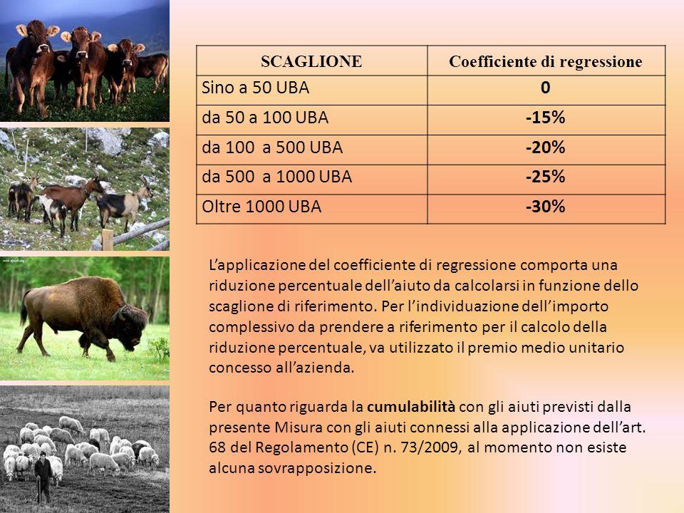 SCAGLIONECoefficiente di regressione Sino a 50 UBA0 da 50 a 100 UBA -15% da 100 a 500 UBA-20% da 500 a 1000 UBA -25% Oltre 1000 UBA -30% Lapplicazione