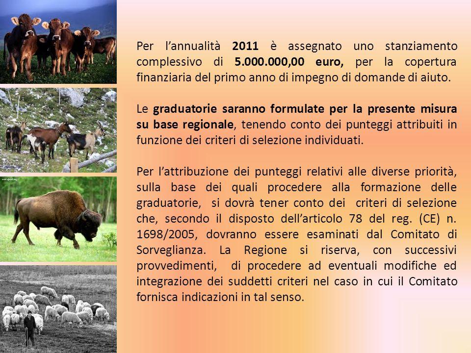 Per lannualità 2011 è assegnato uno stanziamento complessivo di 5.000.000,00 euro, per la copertura finanziaria del primo anno di impegno di domande d
