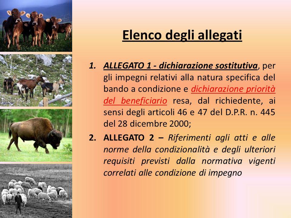 Elenco degli allegati 1.ALLEGATO 1 - dichiarazione sostitutiva, per gli impegni relativi alla natura specifica del bando a condizione e dichiarazione