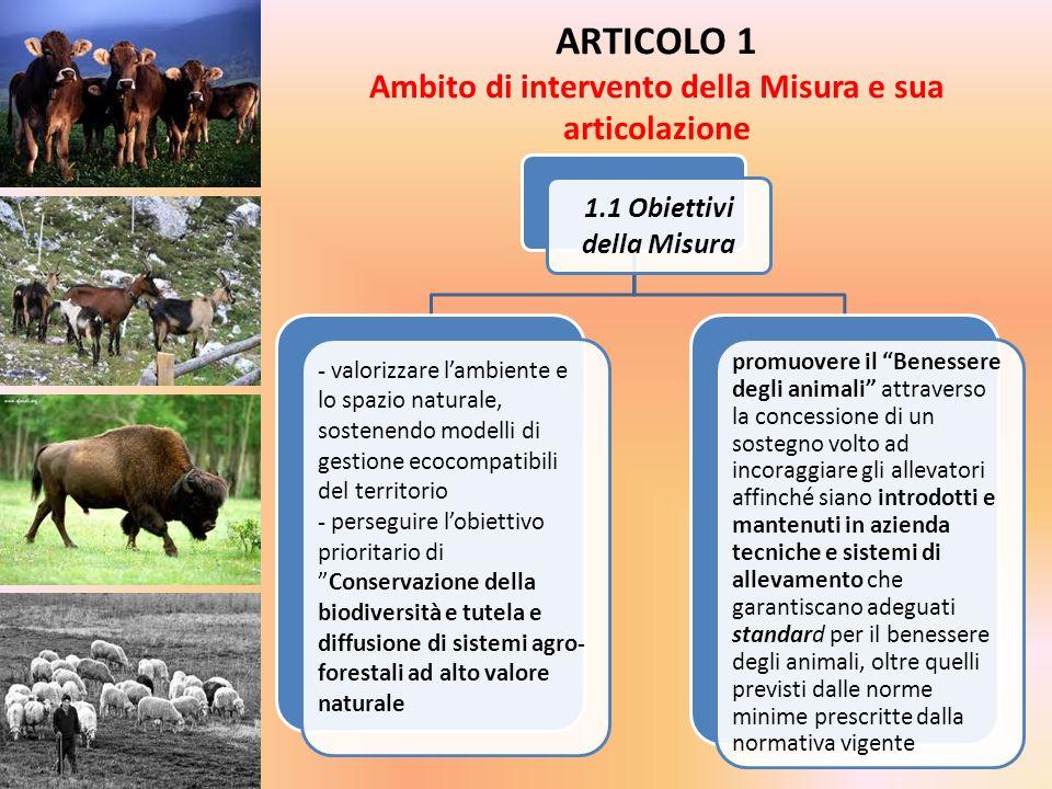 ARTICOLO 1 Ambito di intervento della Misura e sua articolazione 1.1 Obiettivi della Misura - valorizzare lambiente e lo spazio naturale, sostenendo m