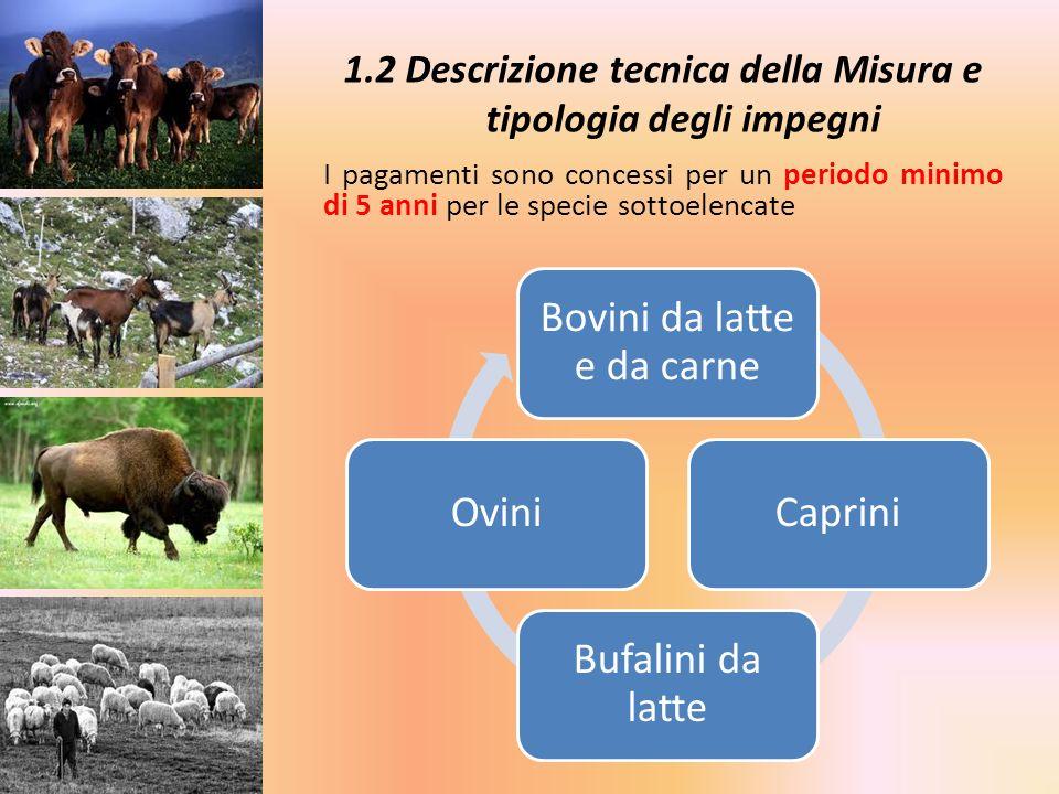Assessorato allAgricoltura Grazie per lattenzione Settore Provinciale Agricoltura di Frosinone