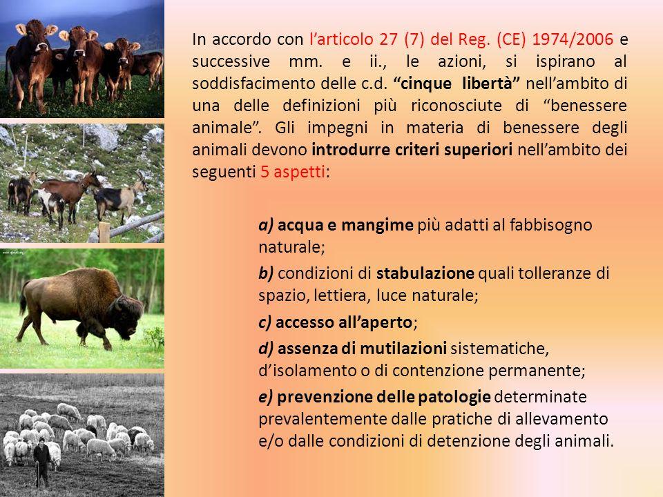 In accordo con larticolo 27 (7) del Reg. (CE) 1974/2006 e successive mm. e ii., le azioni, si ispirano al soddisfacimento delle c.d. cinque libertà ne