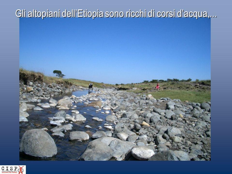 Se vi fosse acqua e niente roccia. Se vi fosse roccia e anche acqua. E acqua (........) Se soltanto vi fosse suono d'acqua. (.......) Drip drop drip d