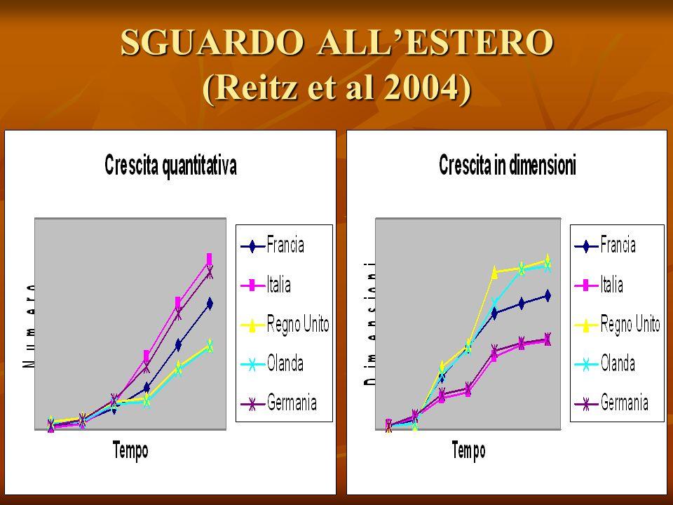 SGUARDO ALLESTERO (Reitz et al 2004)