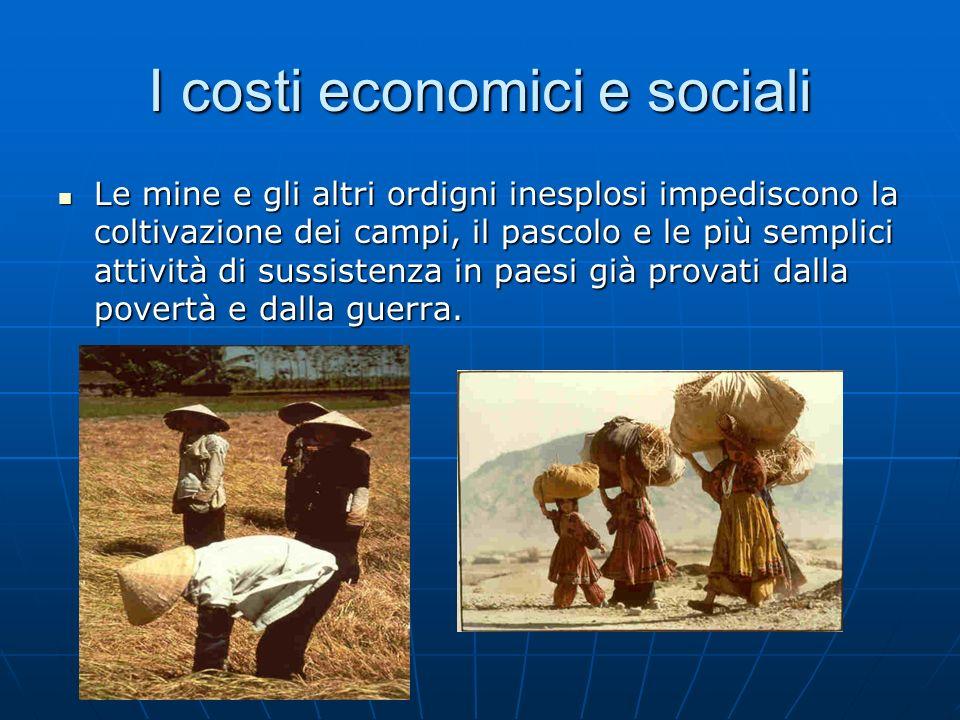 I costi economici e sociali Le mine e gli altri ordigni inesplosi impediscono la coltivazione dei campi, il pascolo e le più semplici attività di suss