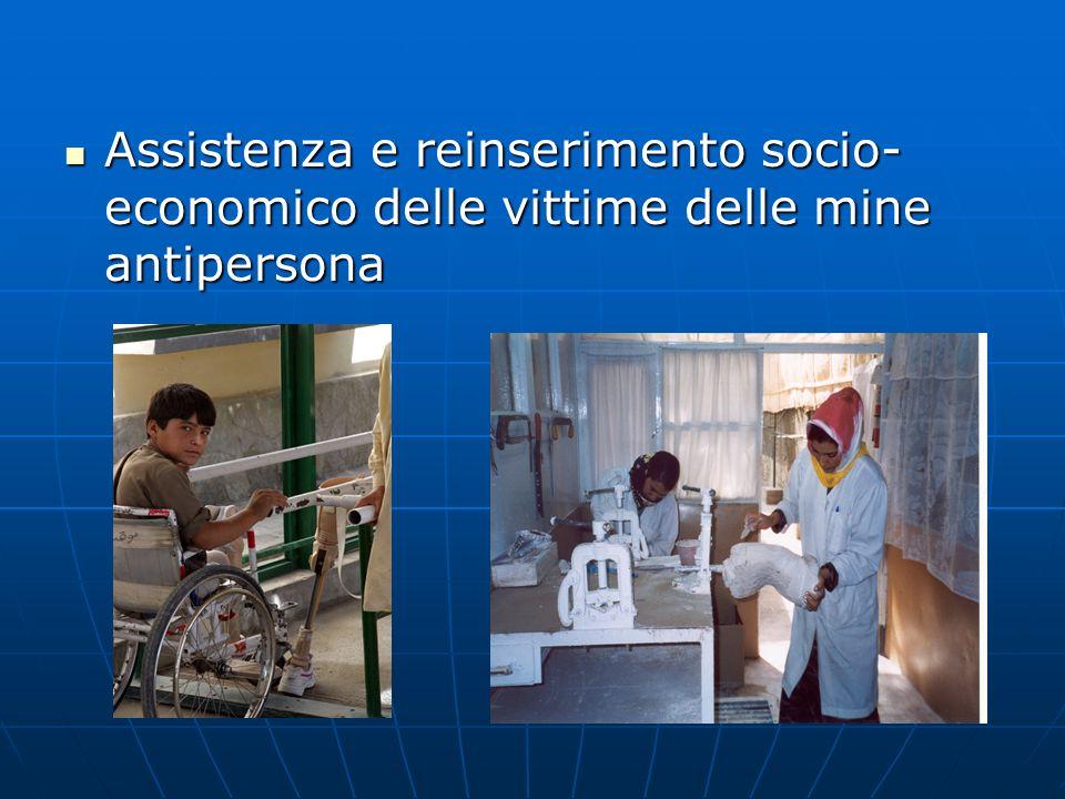 Assistenza e reinserimento socio- economico delle vittime delle mine antipersona Assistenza e reinserimento socio- economico delle vittime delle mine