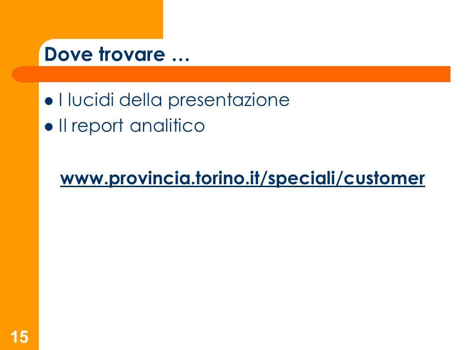 15 I lucidi della presentazione Il report analitico www.provincia.torino.it/speciali/customer Dove trovare …