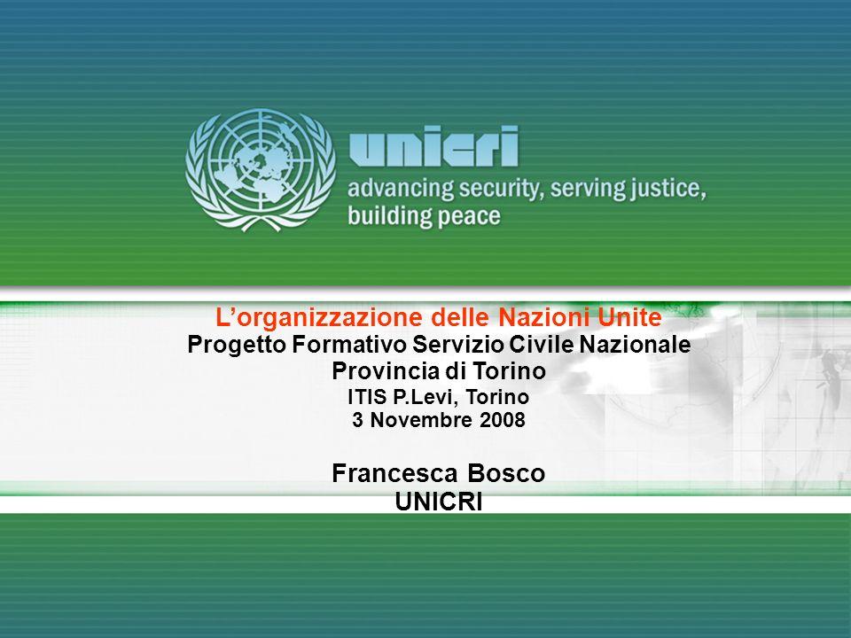 Lorganizzazione delle Nazioni Unite Progetto Formativo Servizio Civile Nazionale Provincia di Torino ITIS P.Levi, Torino 3 Novembre 2008 Francesca Bos