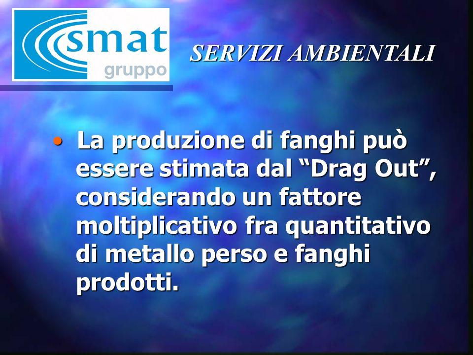 SERVIZI AMBIENTALI La produzione di fanghi può essere stimata dal Drag Out, considerando un fattore moltiplicativo fra quantitativo di metallo perso e fanghi prodotti.