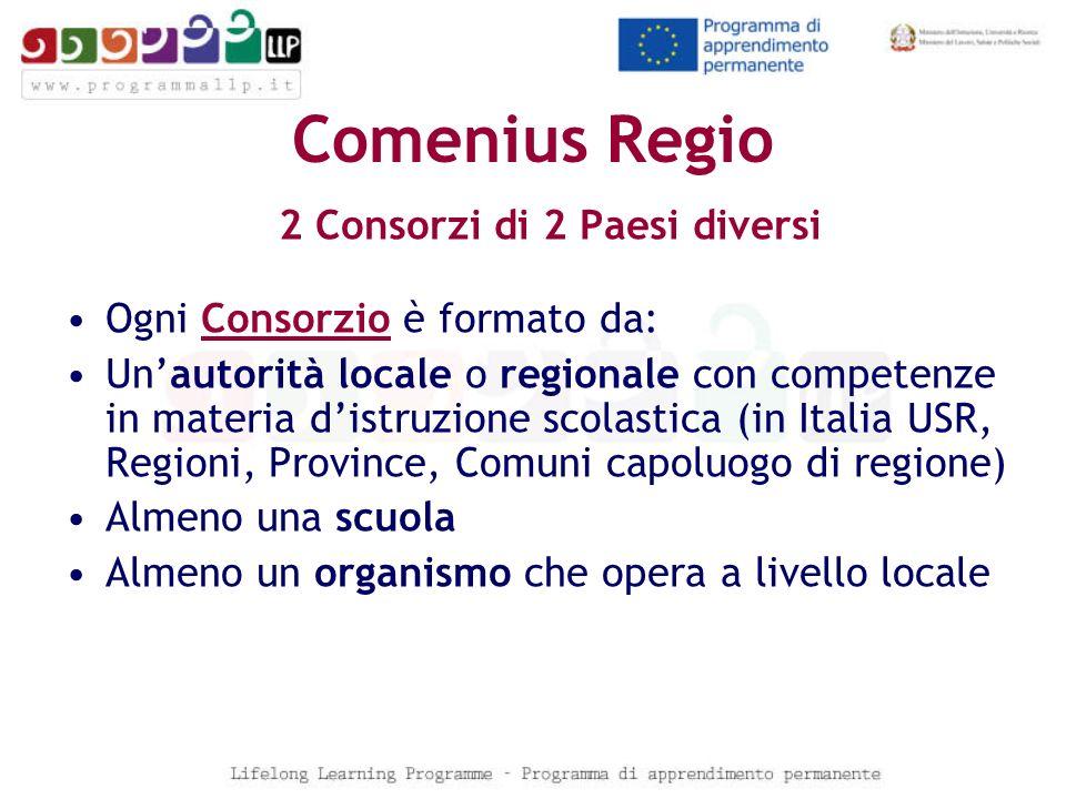 Comenius Regio 2 Consorzi di 2 Paesi diversi Ogni Consorzio è formato da: Unautorità locale o regionale con competenze in materia distruzione scolasti