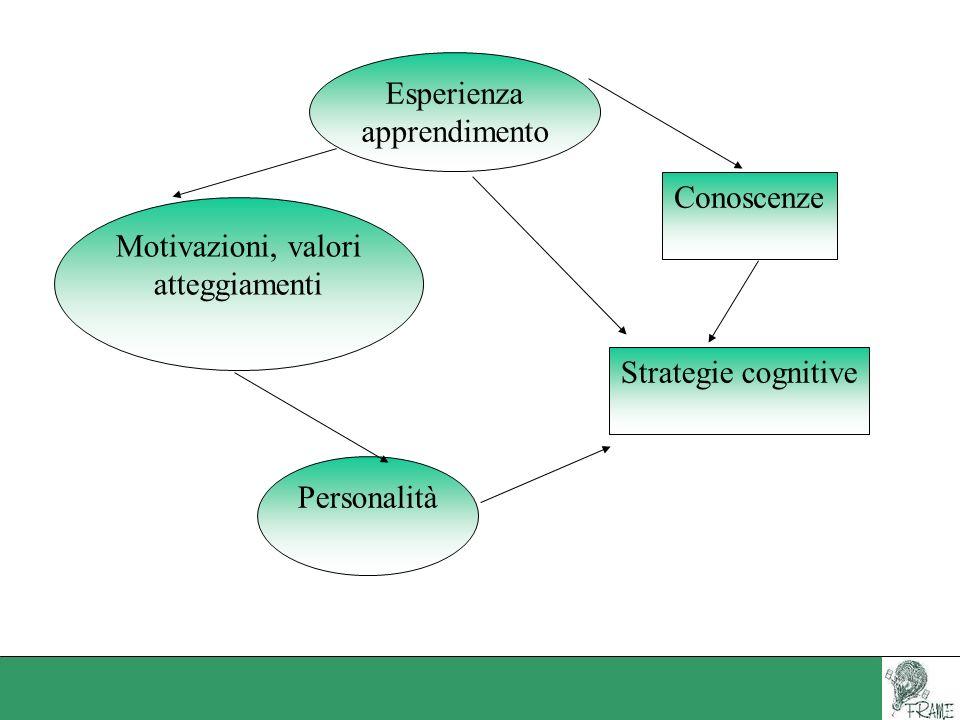 Esperienza apprendimento Motivazioni, valori atteggiamenti Personalità Conoscenze Strategie cognitive