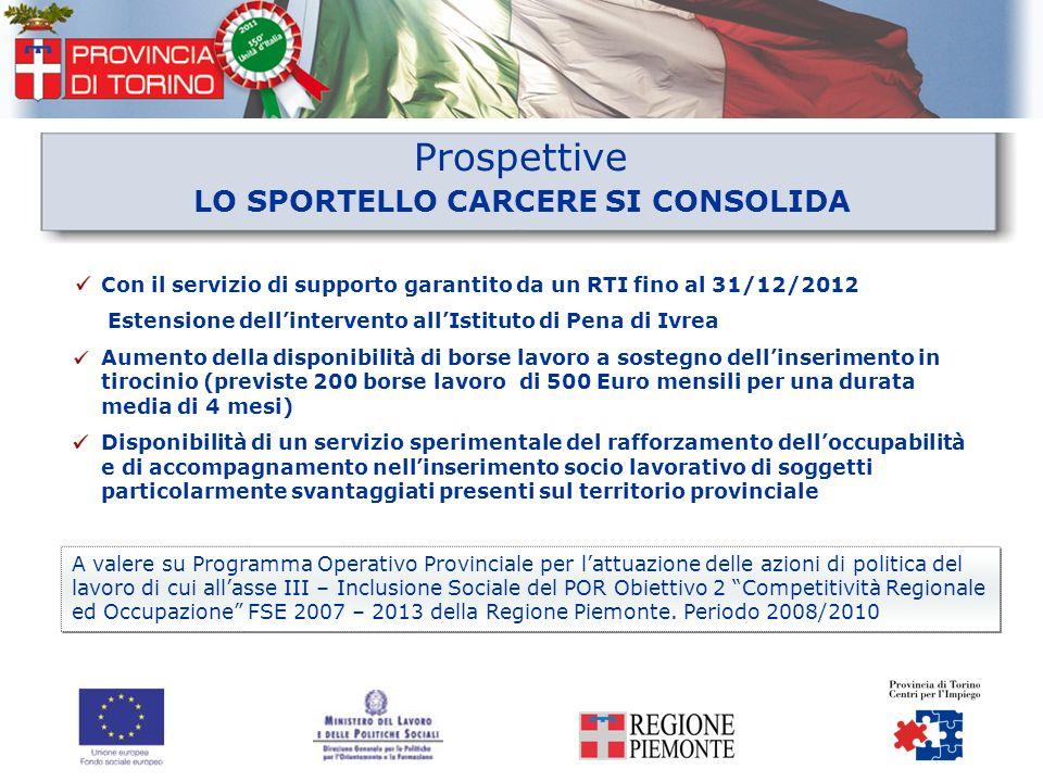 Prospettive Con il servizio di supporto garantito da un RTI fino al 31/12/2012 Estensione dellintervento allIstituto di Pena di Ivrea Aumento della di