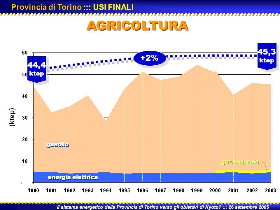 AGRICOLTURA Il sistema energetico della Provincia di Torino verso gli obiettivi di Kyoto.