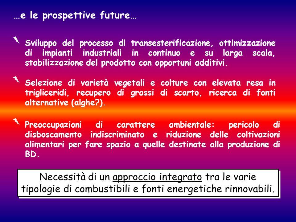 …e le prospettive future… Necessità di un approccio integrato tra le varie tipologie di combustibili e fonti energetiche rinnovabili. Sviluppo del pro