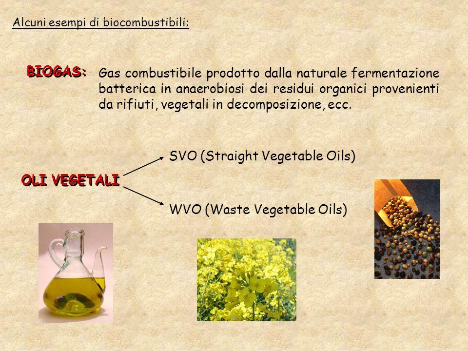 Alcuni esempi di biocombustibili: BIOGAS: Gas combustibile prodotto dalla naturale fermentazione batterica in anaerobiosi dei residui organici proveni