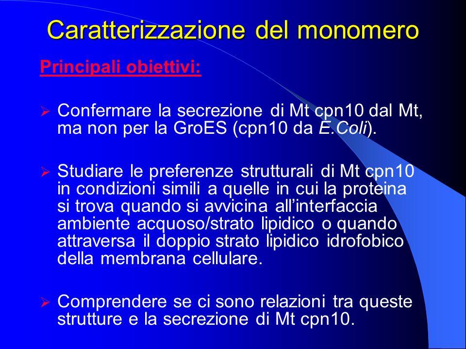 Caratterizzazione del monomero Principali obiettivi: Confermare la secrezione di Mt cpn10 dal Mt, ma non per la GroES (cpn10 da E.Coli). Studiare le p