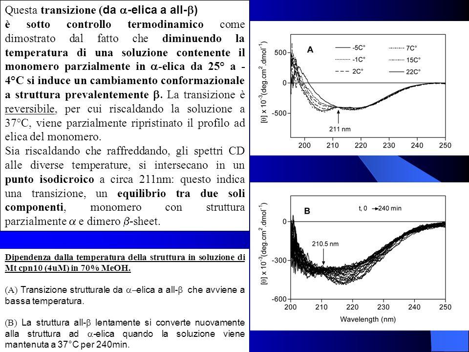 Dipendenza dalla temperatura della struttura in soluzione di Mt cpn10 (4uM) in 70% MeOH. (A) Transizione strutturale da elica a all- che avviene a bas