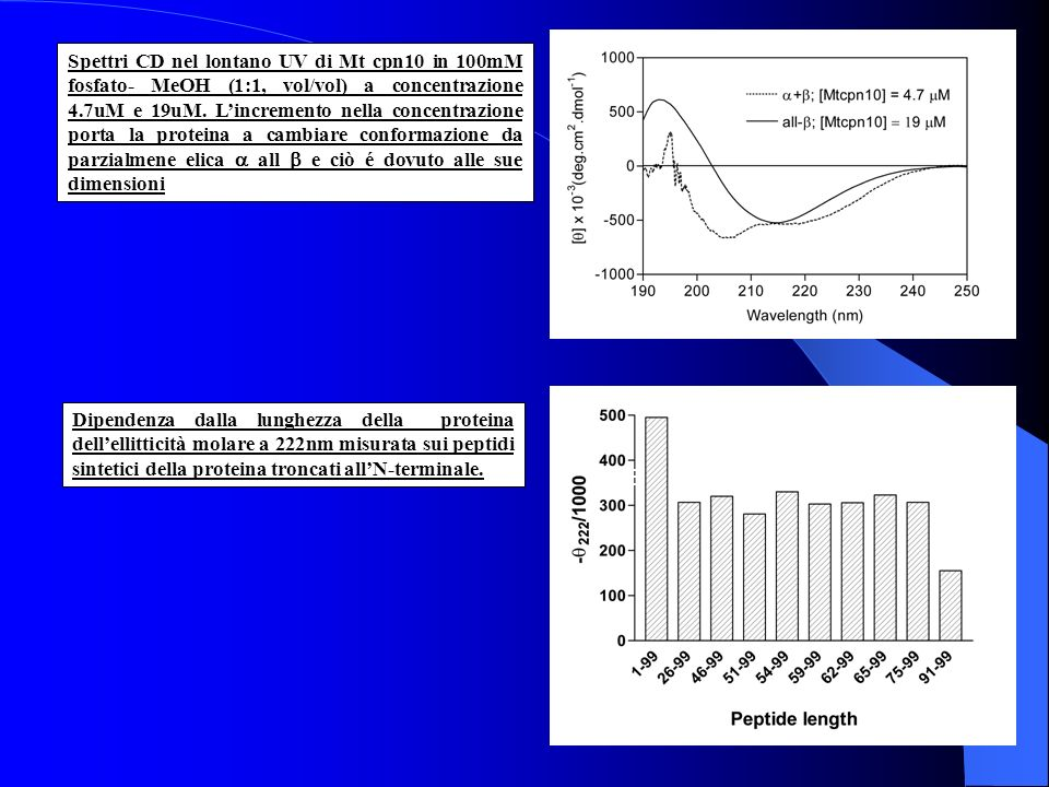 Spettri CD nel lontano UV di Mt cpn10 in 100mM fosfato- MeOH (1:1, vol/vol) a concentrazione 4.7uM e 19uM. Lincremento nella concentrazione porta la p