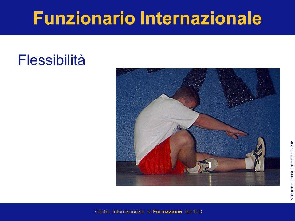 © International Training Centre of the ILO 2007 Centro Internazionale di Formazione dellILO Funzionario Internazionale Flessibilità