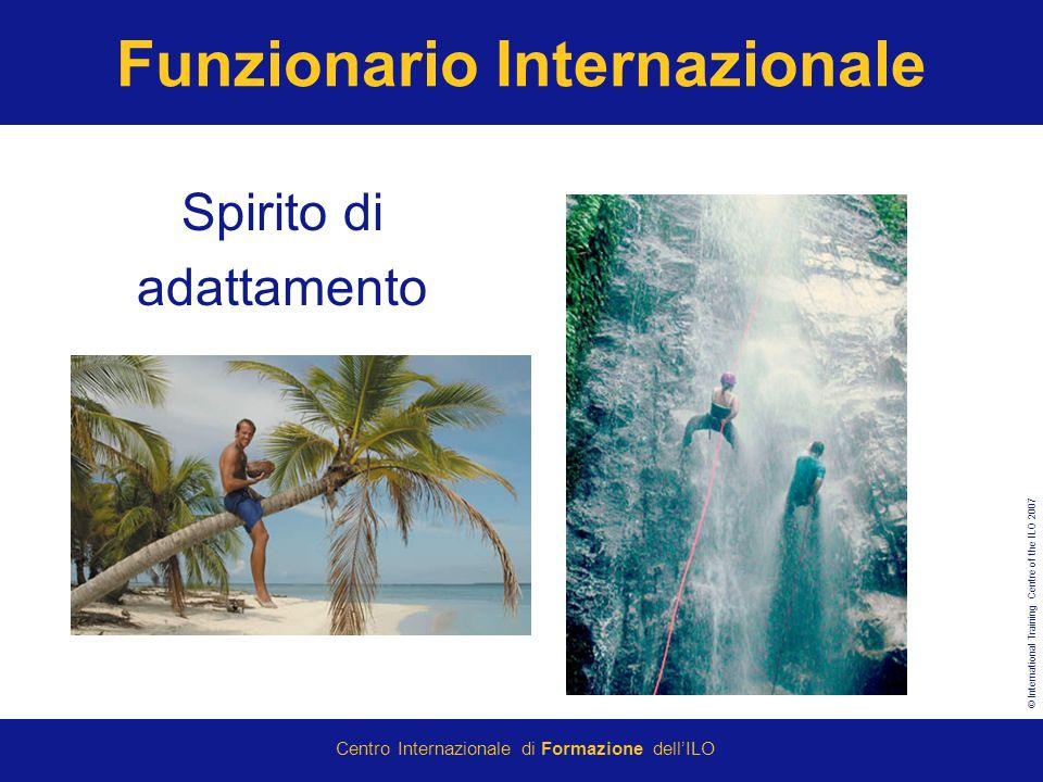 © International Training Centre of the ILO 2007 Centro Internazionale di Formazione dellILO Funzionario Internazionale Spirito di adattamento