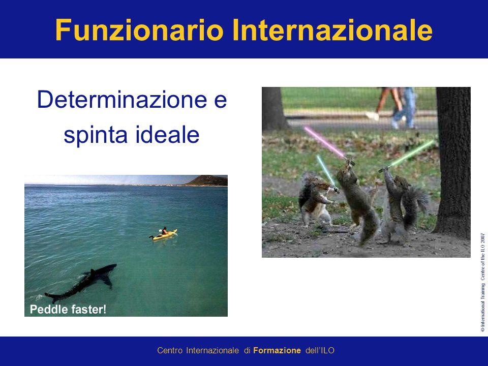 © International Training Centre of the ILO 2007 Centro Internazionale di Formazione dellILO Funzionario Internazionale Determinazione e spinta ideale
