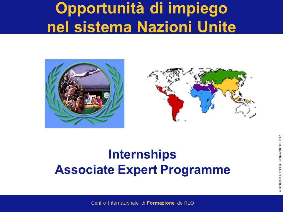 © International Training Centre of the ILO 2007 Centro Internazionale di Formazione dellILO Opportunità di impiego nel sistema Nazioni Unite Internships Associate Expert Programme