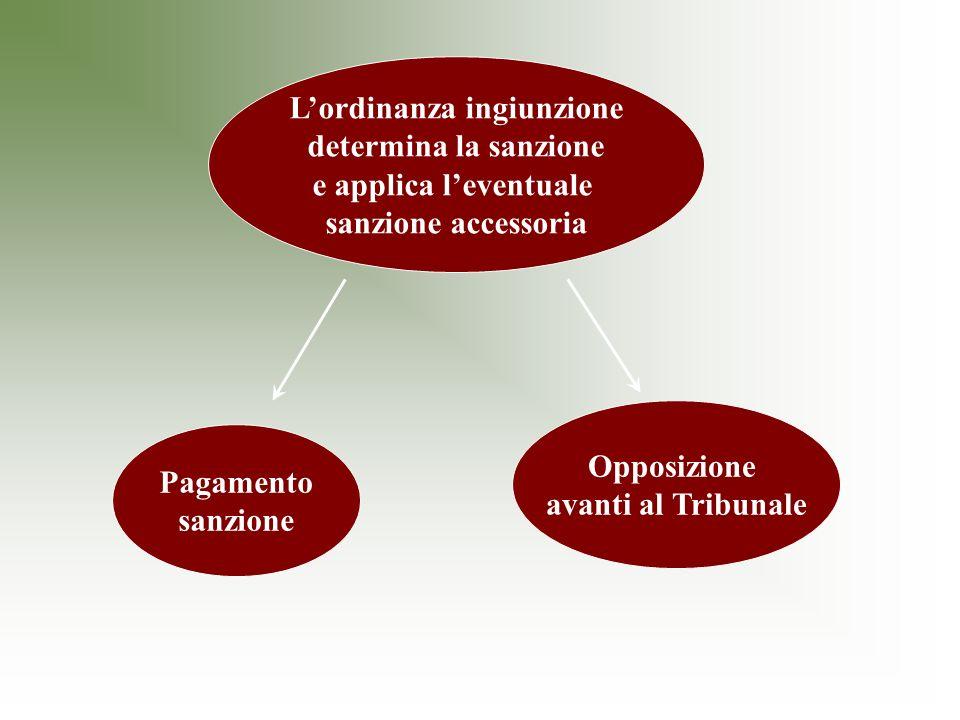 Lordinanza ingiunzione determina la sanzione e applica leventuale sanzione accessoria Pagamento sanzione Opposizione avanti al Tribunale