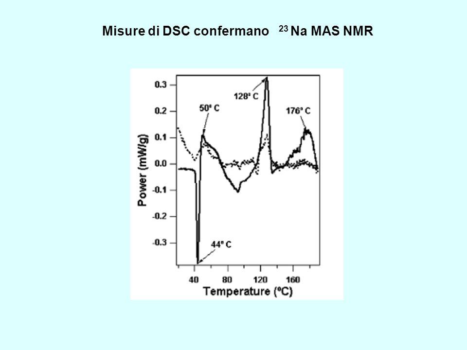 Misure di DSC confermano 23 Na MAS NMR