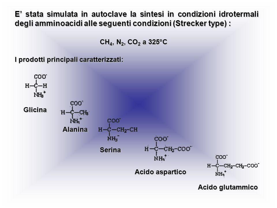 E stata simulata in autoclave la sintesi in condizioni idrotermali degli amminoacidi alle seguenti condizioni (Strecker type) : I prodotti principali