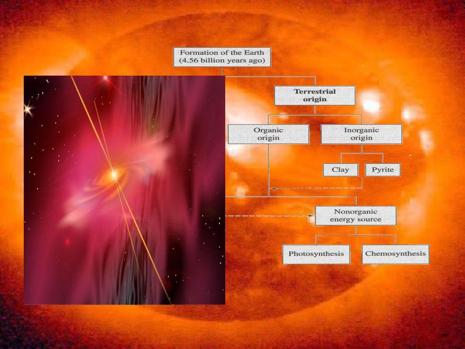 Le teorie sullorigine della vita si possono dividere in due categorie: