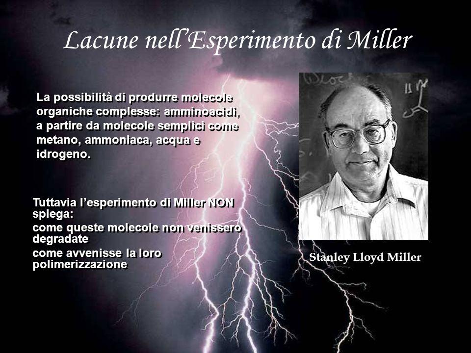 Lacune nellEsperimento di Miller Stanley Lloyd Miller La possibilità di produrre molecole organiche complesse: amminoacidi, a partire da molecole semp