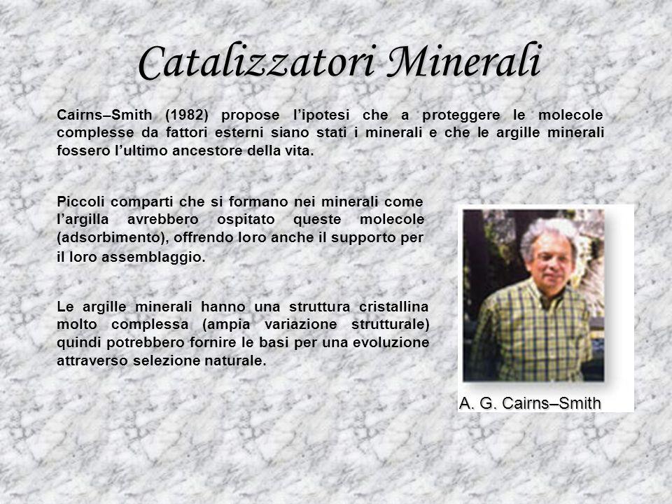 Catalizzatori Minerali A. G. Cairns–Smith Cairns–Smith (1982) propose lipotesi che a proteggere le molecole complesse da fattori esterni siano stati i