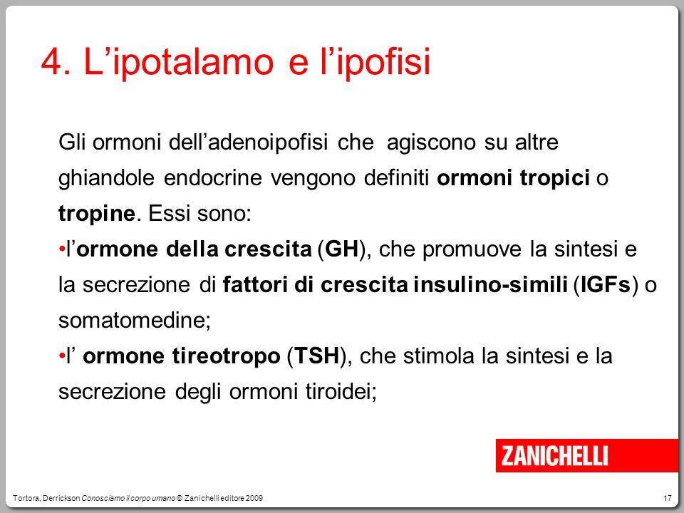 17 4. Lipotalamo e lipofisi Gli ormoni delladenoipofisi che agiscono su altre ghiandole endocrine vengono definiti ormoni tropici o tropine. Essi sono