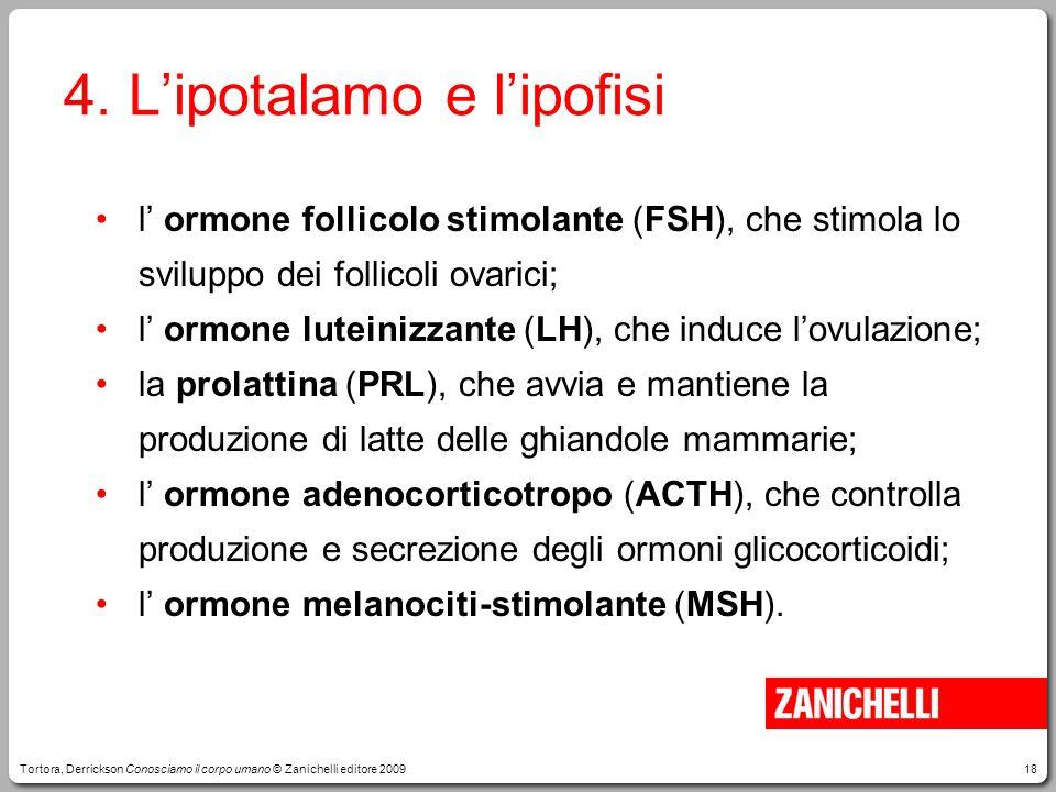 18 4. Lipotalamo e lipofisi l ormone follicolo stimolante (FSH), che stimola lo sviluppo dei follicoli ovarici; l ormone luteinizzante (LH), che induc