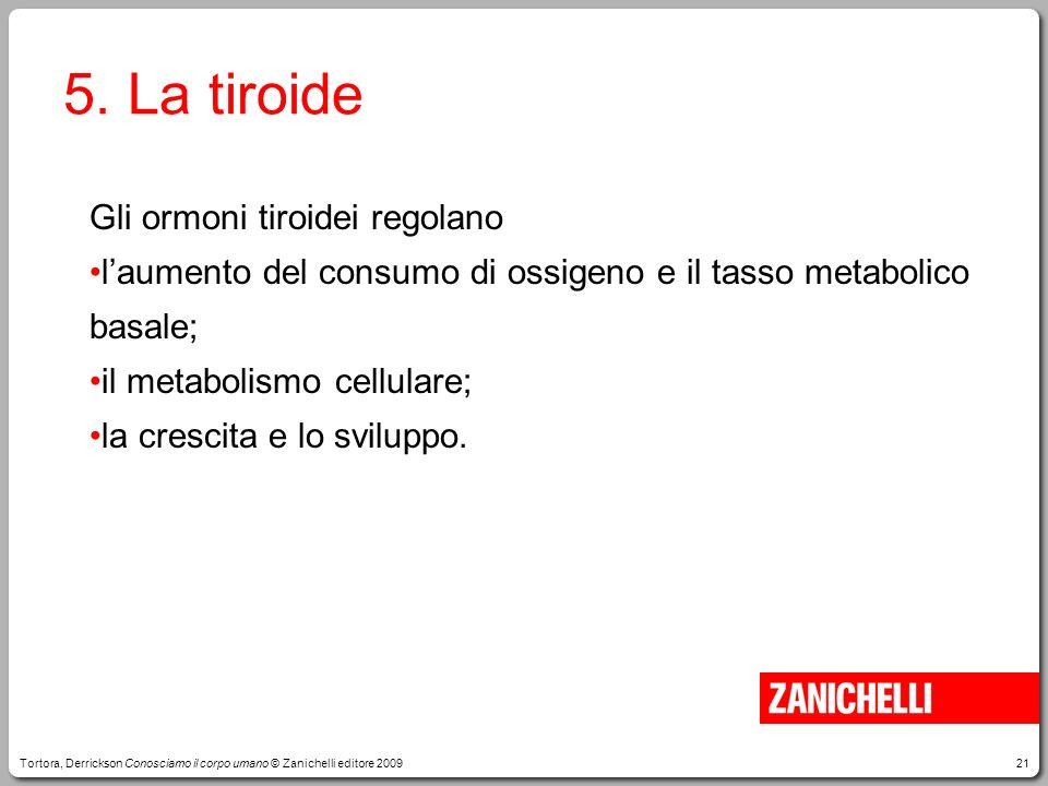 21 5. La tiroide Gli ormoni tiroidei regolano laumento del consumo di ossigeno e il tasso metabolico basale; il metabolismo cellulare; la crescita e l