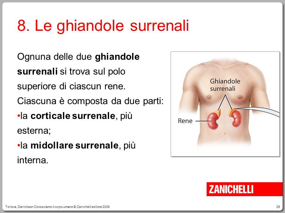 29 8. Le ghiandole surrenali Ognuna delle due ghiandole surrenali si trova sul polo superiore di ciascun rene. Ciascuna è composta da due parti: la co
