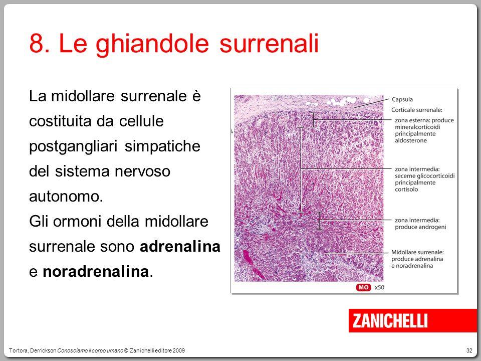32 8. Le ghiandole surrenali La midollare surrenale è costituita da cellule postgangliari simpatiche del sistema nervoso autonomo. Gli ormoni della mi