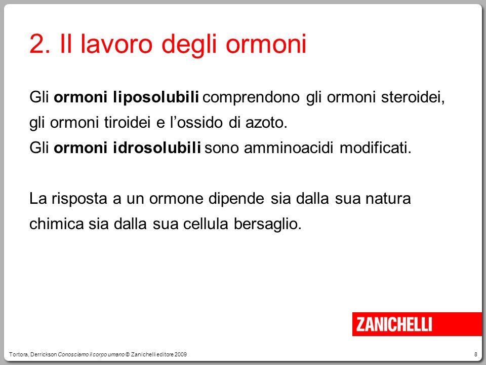 8 2. Il lavoro degli ormoni Gli ormoni liposolubili comprendono gli ormoni steroidei, gli ormoni tiroidei e lossido di azoto. Gli ormoni idrosolubili