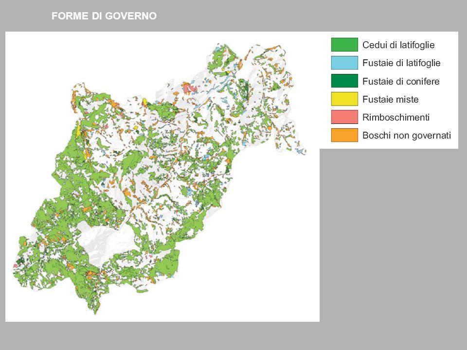 Come riportato nella Tabella 2, la prevalenza dei soprassuoli boschivi è governata a ceduo (80,05%).