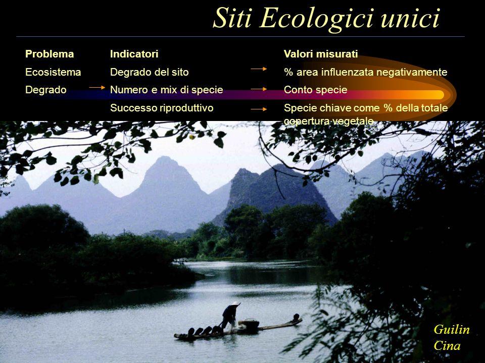 Siti Ecologici unici Problema Ecosistema Degrado Valori misurati % area influenzata negativamente Conto specie Specie chiave come % della totale coper