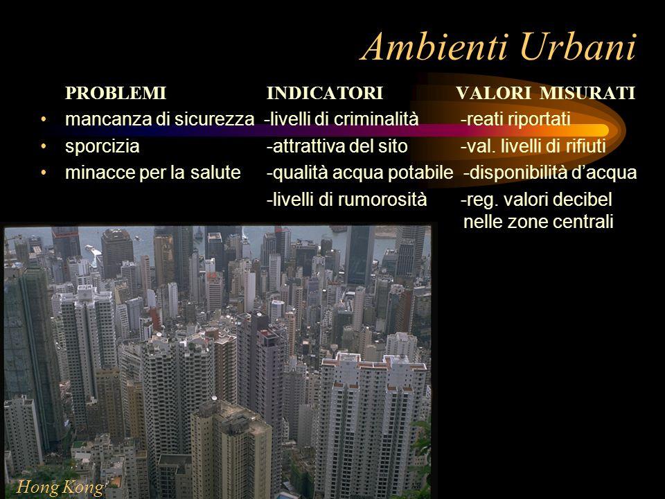 Ambienti Urbani PROBLEMI INDICATORI VALORI MISURATI mancanza di sicurezza -livelli di criminalità -reati riportati sporcizia -attrattiva del sito -val
