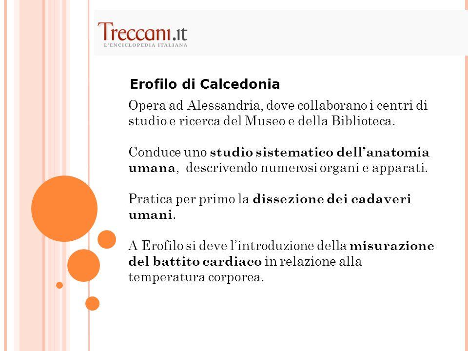 Opera ad Alessandria, dove collaborano i centri di studio e ricerca del Museo e della Biblioteca. Conduce uno studio sistematico dellanatomia umana, d