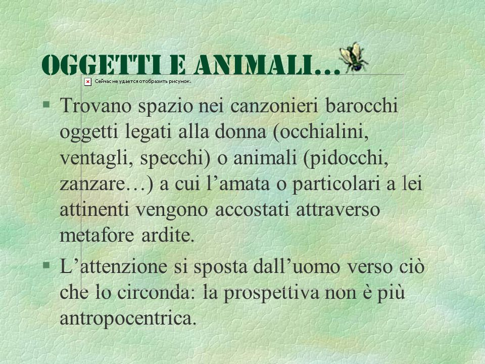 Oggetti e animali...